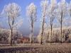 fotos_van_frank_20090703_1360315099